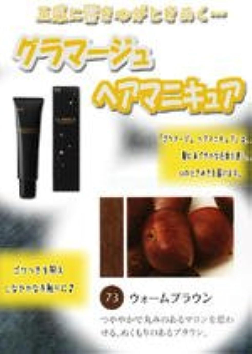 アッパー受粉するベースHOYU ホーユー グラマージュ ヘアマニキュア 73 ウォームブラウン 150g 【ブラウン系】
