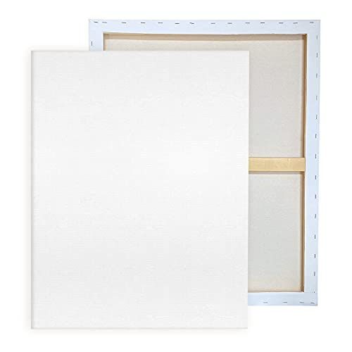 Pre Stretched Canvases for Painting 24x36' 2-Pack Large Blank Canvas Boards for...