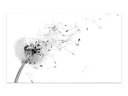 GRAZDesign glazen foto's zwart wit - glazen afbeeldingen paardenbloem - afbeeldingen op glas slaapkamer / 100933 60x40cm