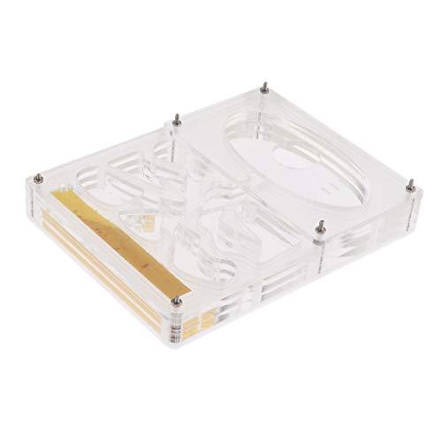 FLAMEER Caja Nido Carcasa de Hormiga Transparente Formicarium de Granja Alimentación Hormigas - 13 x 10 x 2 cm
