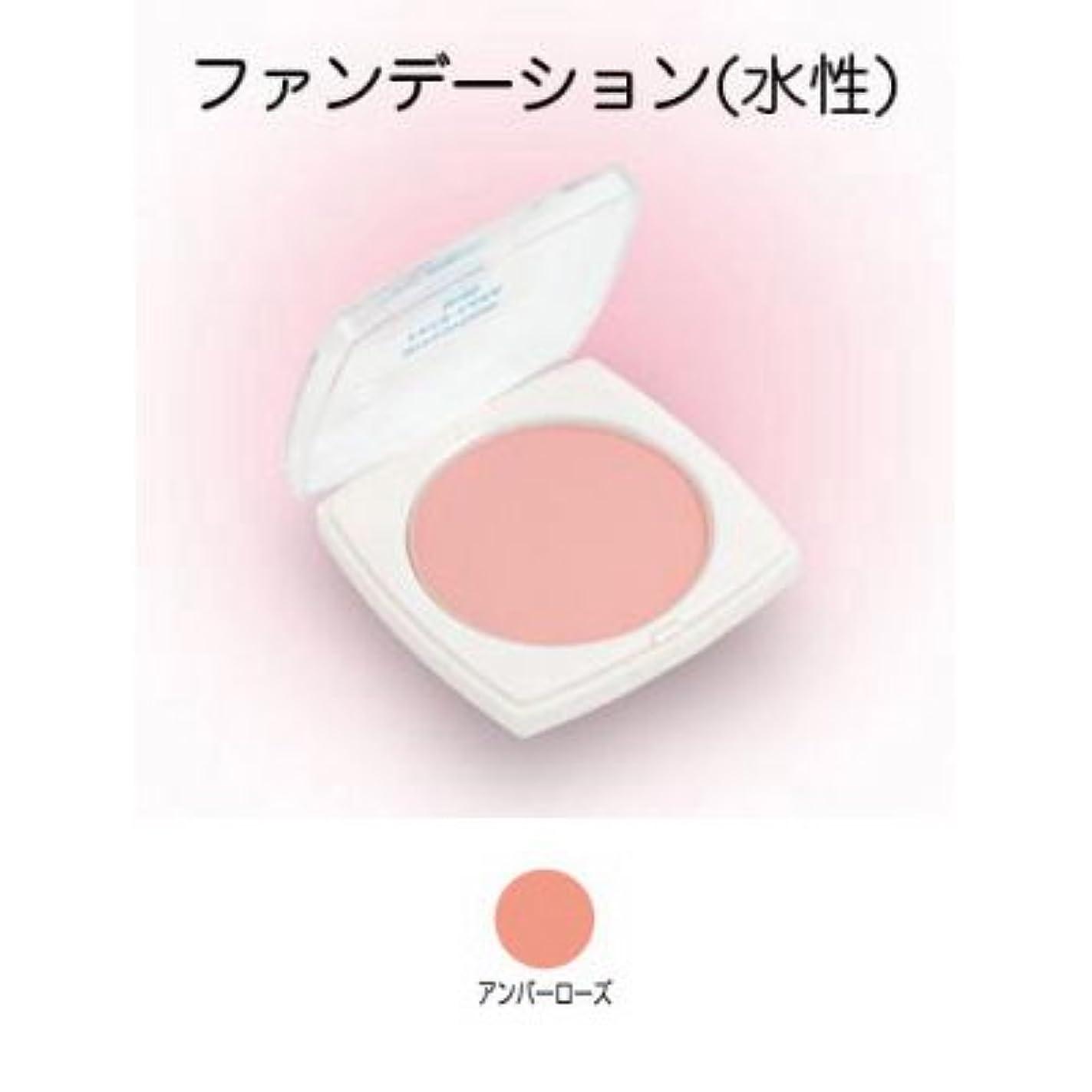 ハック実り多いピケフェースケーキ ミニ 17g アンバーローズ 【三善】