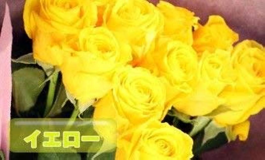 ハブ取り囲む不利益[ビズフラワー]【花束 バラ(大輪) 12本】インポートローズ イエロー 薔薇 お祝い 誕生日 記念日 花材 装飾 感謝 BisesFlower