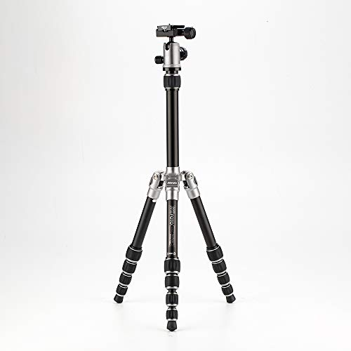 MeFOTO BackPacker Classic Lightweight 51.2' Aluminum Travel Tripod Kit w/Case, Twist Locks, Double Action Ballhead w/Arca Swiss Plate for Mirrorless/DSLR Sony Nikon Canon Fuji - Titanium (A0350Q0T)