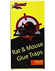 Trap for control mice and rats