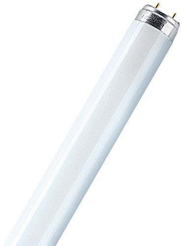 Osram L18W/830 - Lámpara (18W, G13, 1350 lm, A, 50 Hz, 59 cm) Color blanco