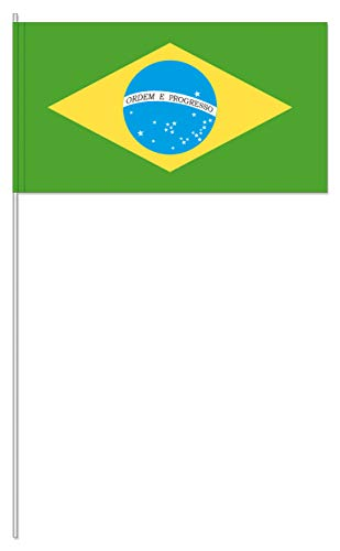 TrendLineMix 20 Stück Brasilien Fähnchen Fahnen 12 x 24 cm Plastik Stab Papier Südamerika Staaten