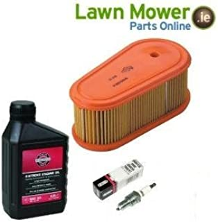 essie Service KIT for Briggs and Stratton DOV Engine from ISE Forest Garden