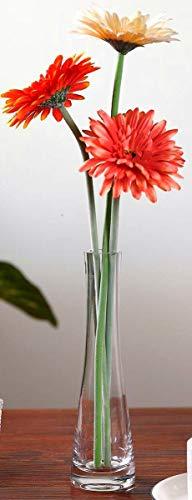 GCJ Small Bud Vase , Clear Glass Flower Vase,Single Stem Vases for Home Decor Gift