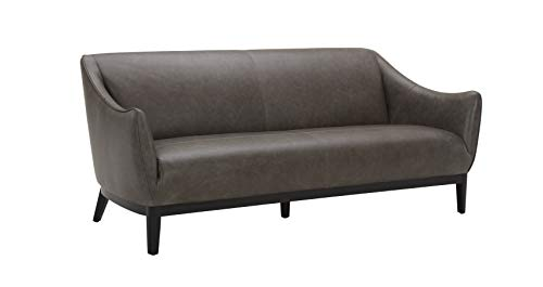 "Amazon Brand – Rivet Bayard Contemporary Leather Sofa Couch with Curved Armrests, 76""W, Grey"
