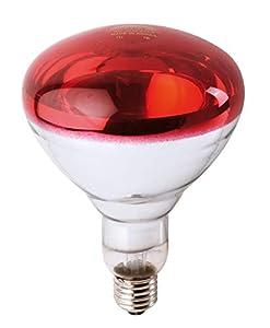 Philips Infrared Industrial Lámpara Reflectora Incandescente de Infrarrojo, Rojo, 150 W