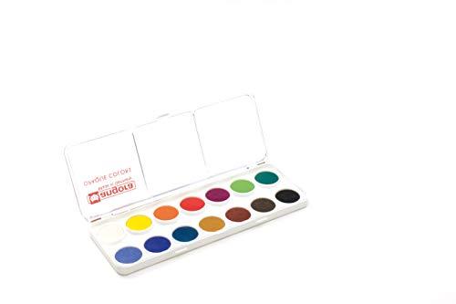 Finetec Botones de pintura de 23 mm, 14 unidades, en caja de plástico resistente, Goma arábiga, pigmentos, metal, 1