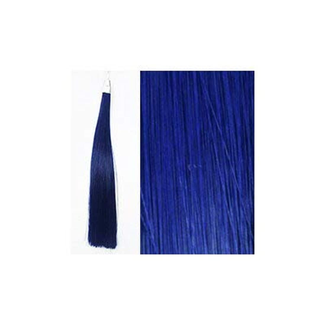 しかしながら説明的マートカミエク ヘアーエクステンション ブルー 6本毛