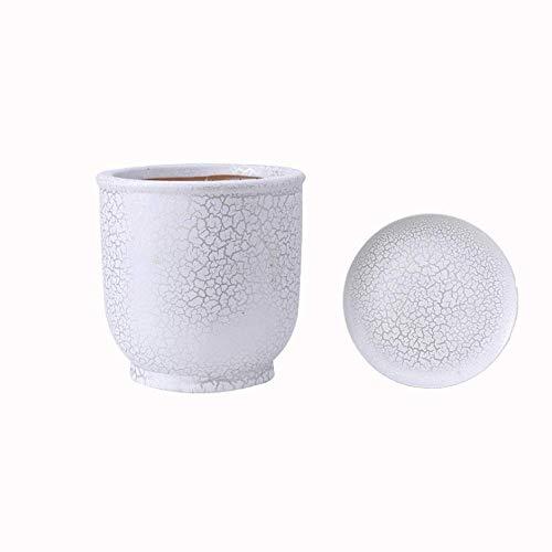 Alqn Maceta suculenta de cerámica, maceta grande y antigua, maceta de tubo alto, maceta para plantas verdes, gran regalo para jardineros, maceta de jardín interior y exterior