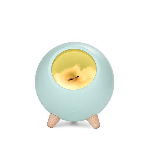 ACHICOO Mini USB Vibrator met 10 snelheden voor vrouwen speelgoed waterdicht met vibrator voor dildo met clitorisstimulator Spot G