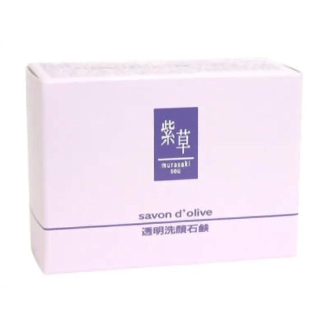 マッシュ焦げ謎めいた紫草 サボンドリーブ(洗顔)