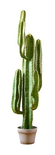 Moderner Kaktus im Topf - XL Kunstkaktus/Künstlich - Höhe: 115cm - Premium Kunstpflanze - Kaktus Künstlich/Dekokaktus - Naturgetreu & Hochwertig