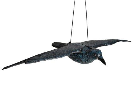 Hillfield Schwarzer Rabe fliegend Kunststoff Taubenschreck Taubenabwehr Vogelschreck (1)