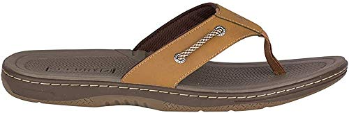 Sperry Men's Havasu Sandal