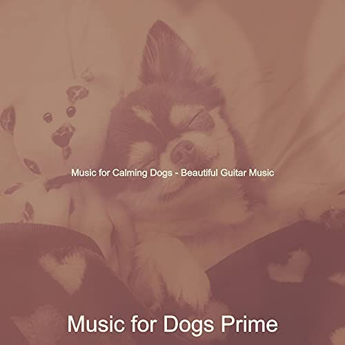 Music for Dogs Prime