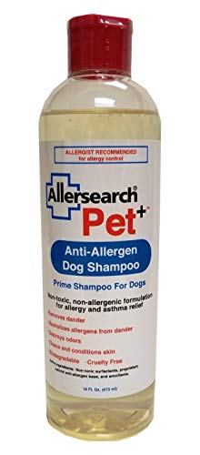 Pet+ Dog Shampoo 16 Oz
