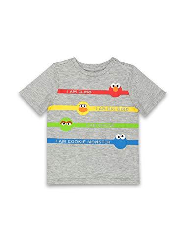 Isaac Mizrahi Loves Sesame Street Gang Elmo Toddler Baby Short Sleeve Tee (24 Months, Gray)