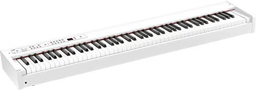 Korg D1 88-key Stage Piano/Controller (White)