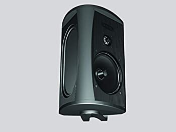 Definitive Technology 5.25 Inch Outdoor Woofer Speaker