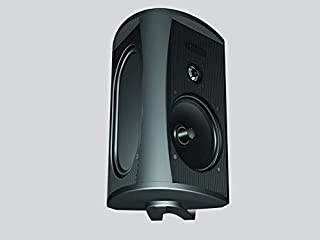 Definitive Technology AW5500 Outdoor Speaker - 5.25-Inch Woofer | 175 Watts | High Performance | Built for Extreme Weather | Single, Black (B00170IO7S) | Amazon price tracker / tracking, Amazon price history charts, Amazon price watches, Amazon price drop alerts