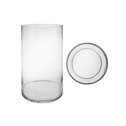 Mega Vases Cylinder Vase 8 Inch x 14 Inch, Decorative Clear Glass with Sturdy Base, Wedding Centerpieces, Flower Bouquets, Home Décor, Celebrations, Parties, Event Planning, Arts & Crafts