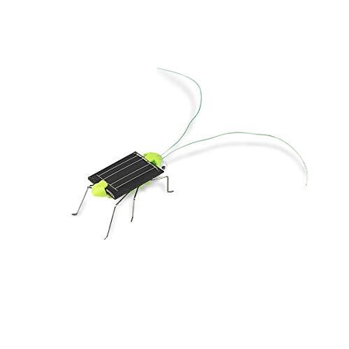 Eurowebb Criquet à énergie Solaire Animal