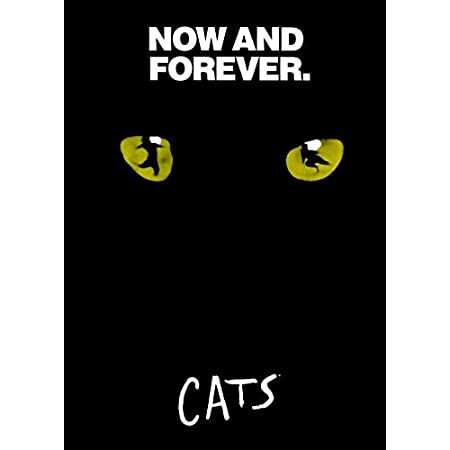 """27x40/"""" Theater Size Broadway Licensed-NEW-USA CATS Poster"""