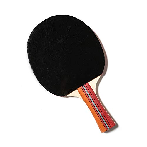 Buy HUATINGRHPP Ping Pong Ping Pong Paddle Table Tennis Balls Bats Shake Hands 2 Bats And2 Balls,Pad...