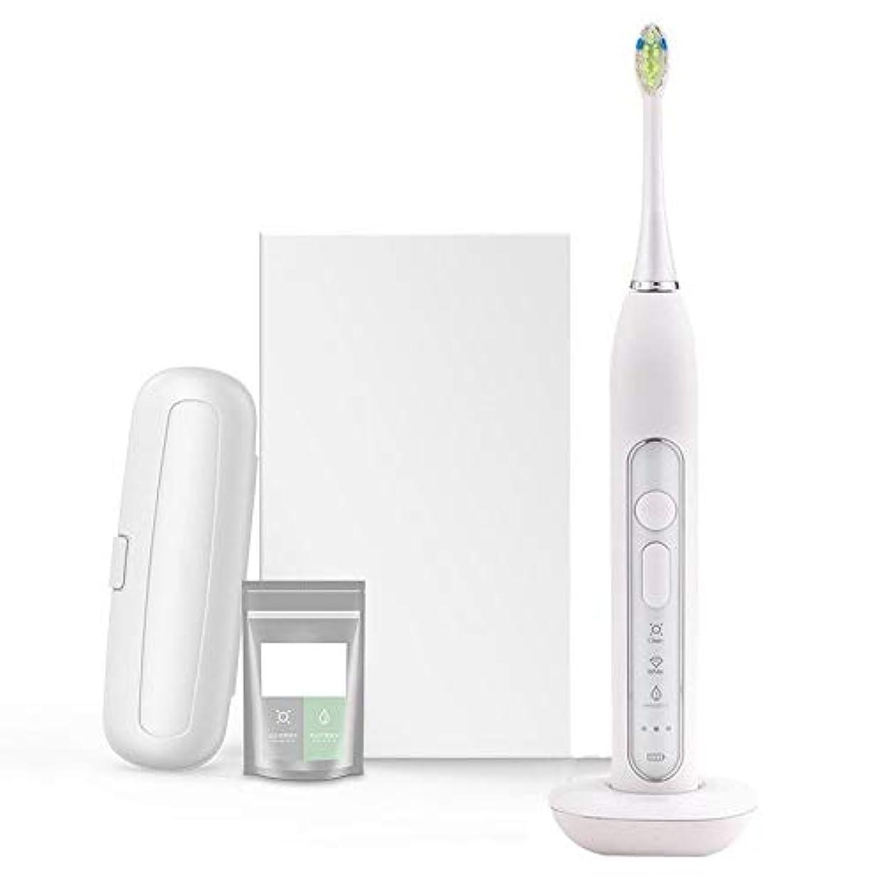 ペア完璧不機嫌ハウス高周波振動電動ホワイトニング歯ブラシ用敏感な口腔ブラシヘッド、3クリーニングクラス変換モード付きリマインダーゾーンusb機能ローディング