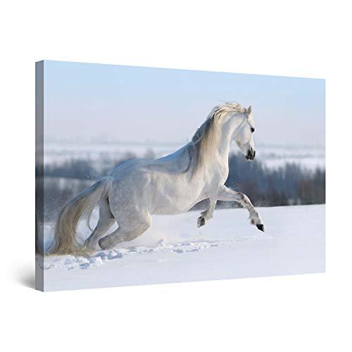 Startonight Wall Art Canvas Wit Paard in de Sneeuw, Paarden USA Ontwerp voor Home Decor, Dual View Surprise Artwork Modern Ingelijst Klaar om Wall Art Hang 100% originele kunst schilderij! 120 x 80 cm Zwart