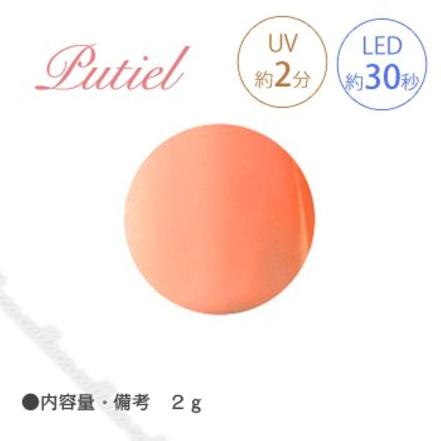 目の前の差別野望Putiel プティール カラージェル 103 ブラッドオレンジ 2g
