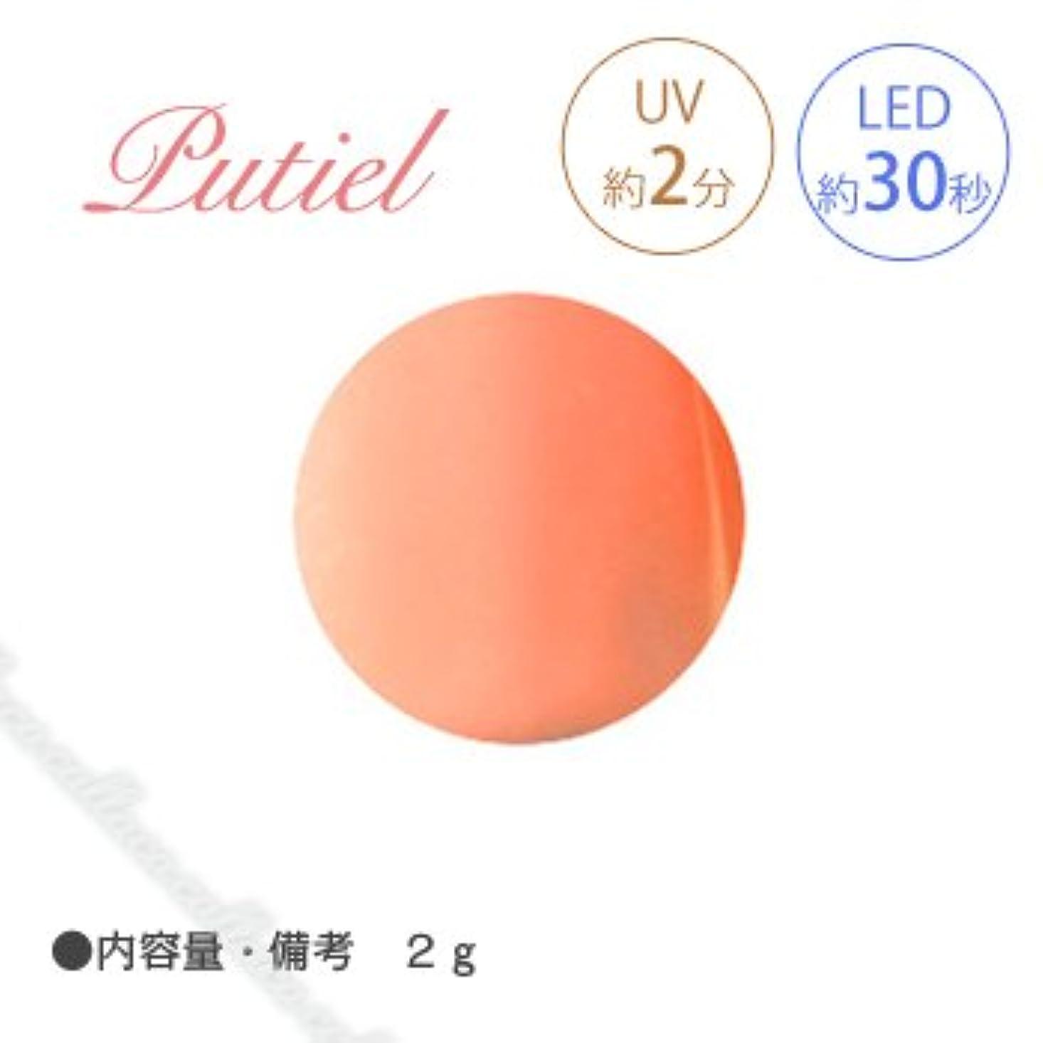 エッセイディンカルビルどう?Putiel プティール カラージェル 103 ブラッドオレンジ 2g