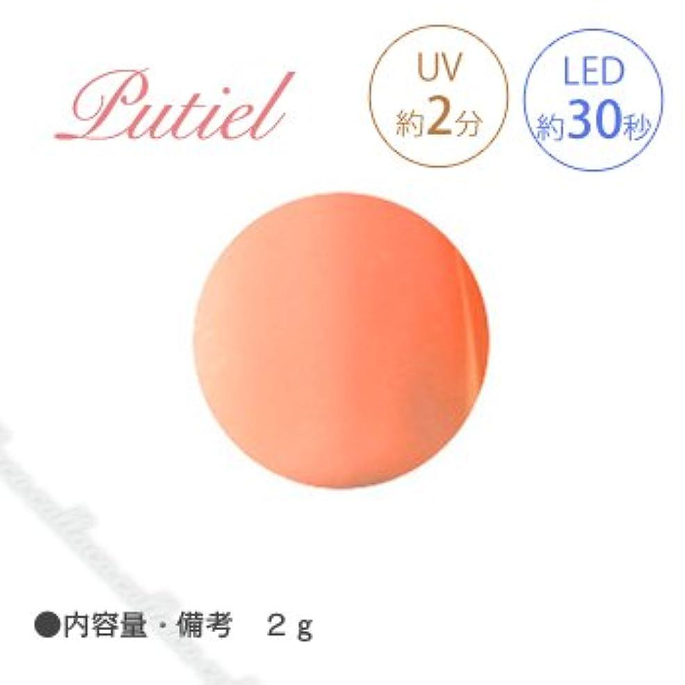 安心させる商標称賛Putiel プティール カラージェル 103 ブラッドオレンジ 2g