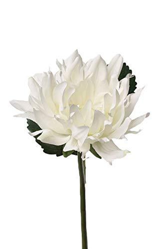 artplants.de Set 5 x Kunstblumen Dahlie JESY, Creme, 2 Blätter, 30cm, Ø 12cm - Seidenblumen