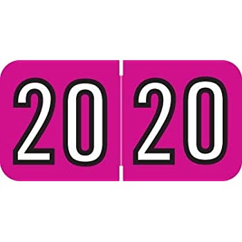 """Quick Ship 2020 Year Labels, Barkley Compatible, 3/4""""H x 1-1/2""""W, Laminated, Roll of 500, Ships in 1 Business Day!"""