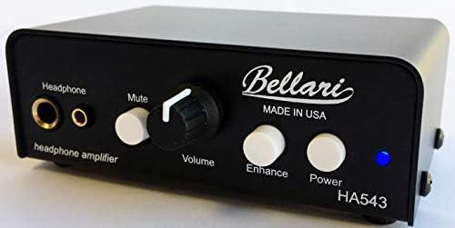Top 10 Best woo audio amplifier