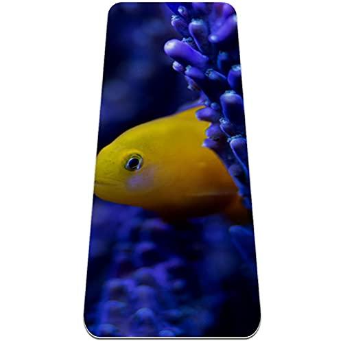 Pescado de Algas moradas Esterilla de Yoga TPE Lindo tapete Antideslizante para el Suelo con Bolsa para Mujeres Hombres niños Adultos 183x61cmx0.6cm