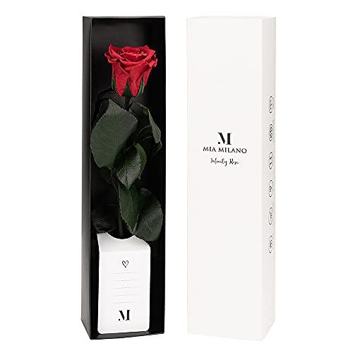 Mia Milano Konservierte Rose am Stiel I Rote Infinity Rose in hochwertiger Geschenkbox I Rosen Geschenk für Frauen I Haltbare Rose mit Geschenkkarte