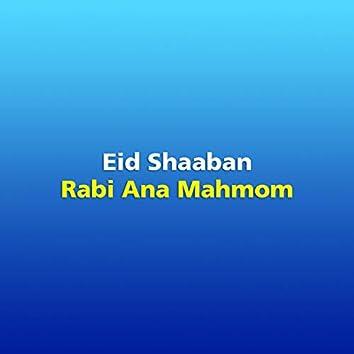 Rabi Ana Mahmom