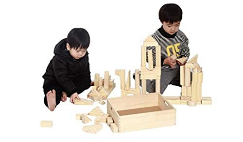 MOD Complete Extra Large Size - 64 Piece Set Children's Wood Building Blocks with Solid Wooden Storage Tray Holder- Made from Solid Organic BPA-Free Natural New Zealand Pinewood STEM Toys