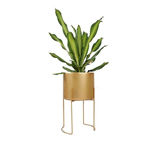 GUOXIANG Pflanzenständer Metall Gold Pflanzen Ständer Blume Rack Blumentopf Hoch Palme Übertopf mit Gestell Gold Pflanzen Halter Wohnzimmer Pflanzen Halter für drinnen und draußen