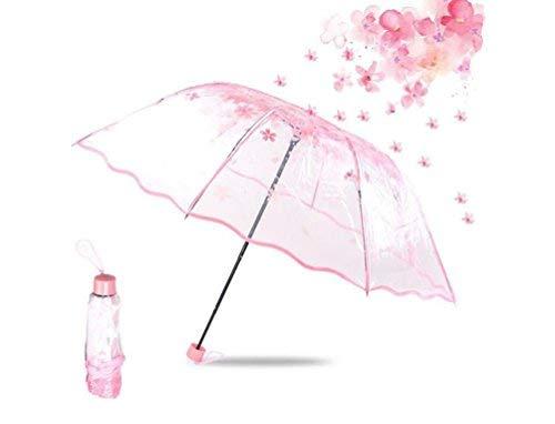 Transparent Regenschirm Grosser Durchsichtiger Regenschirm Blumen Kreativer Reiseschirm für Kinder Damen Frauen Leicht Durchsichtig Windfest Durchmesser 96cm