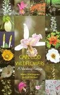 Cape Cod Wildflowers: A Vanishing Heritage