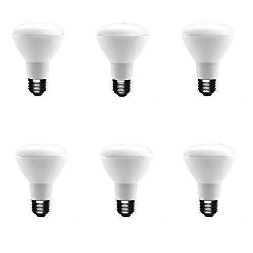 EcoSmart 50-Watt Equivalent R20 Dimmable LED Light Bulb Daylight (6-Pack)
