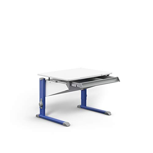 moll Bandit CP Füße Blau mit Schublade Kinderschreibtisch, Holz, 31.1 kg