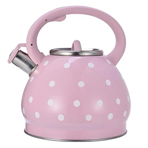 PLHMS Tea Kettle Stainless Steel Hot Water Kettle 3L Whistling Fast to Boil Suitable for Outdoor Travel Hemispherical